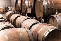 חדר יין ביקב באזור זכרון יעקב